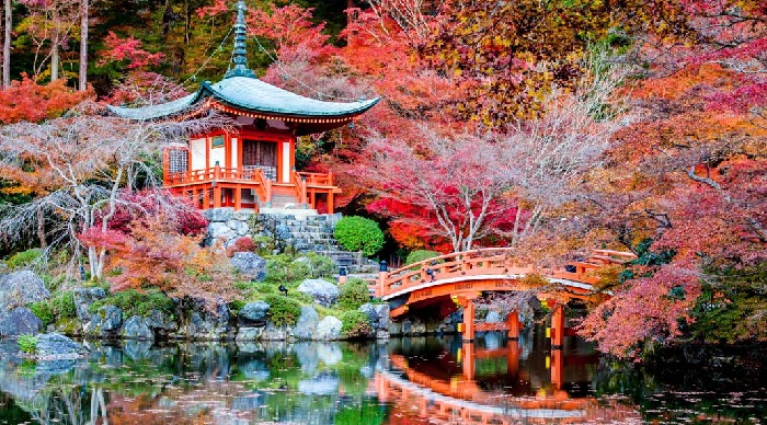 kyoto asian singles Take a luxury asian cruise to visit japan, china, thailand, taiwan, and much more  or tour museums that reveal the european influences dating back to imperial germany's century-old.