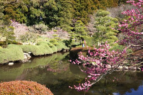 The first of the 3 Great Japanese Gardens AsianDate travels to this week is Kairaku-en.