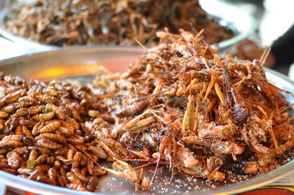 Friend insects are a common delicacy when you visit Cambodia.