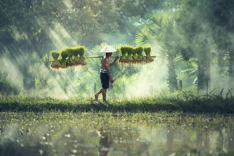 Visit Cambodia AsianDate